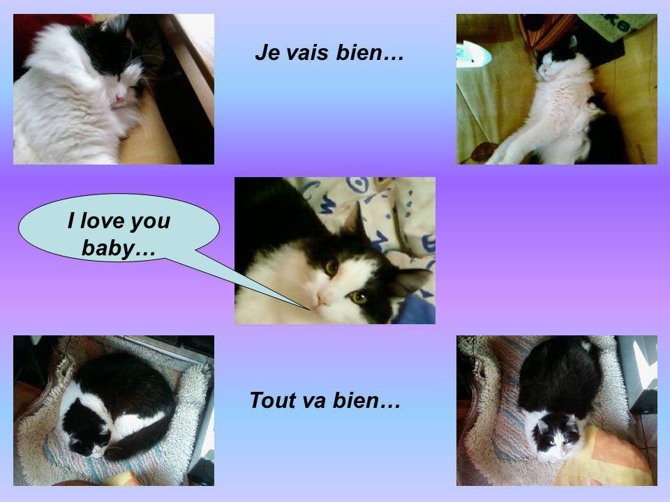 I love you baby… Je vais bien… Tout va bien…