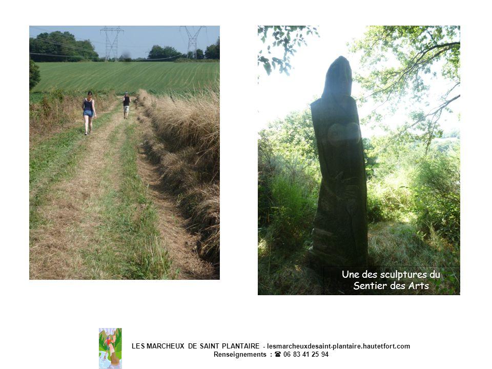 LES MARCHEUX DE SAINT PLANTAIRE - lesmarcheuxdesaint-plantaire.hautetfort.com Renseignements : 06 83 41 25 94 Une des sculptures du Sentier des Arts
