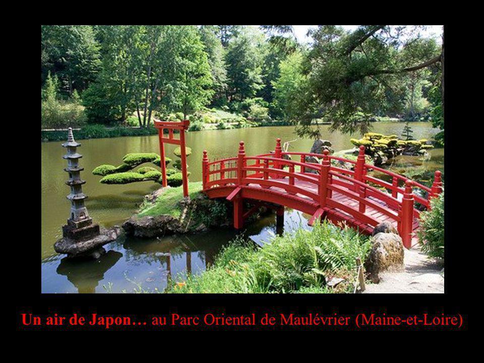 Un air de Japon… au Parc Oriental de Maulévrier (Maine-et-Loire)