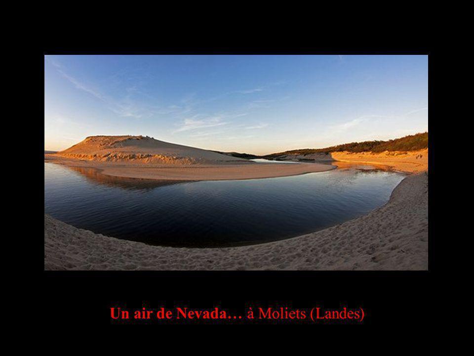 Un air de Nevada… à Moliets (Landes)