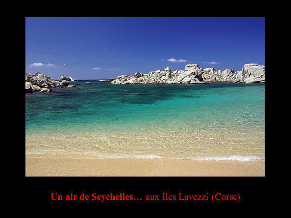 Un air de Seychelles… aux Iles Lavezzi (Corse)