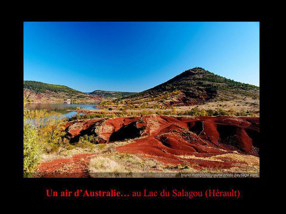 Un air dAustralie… au Lac du Salagou (Hérault)