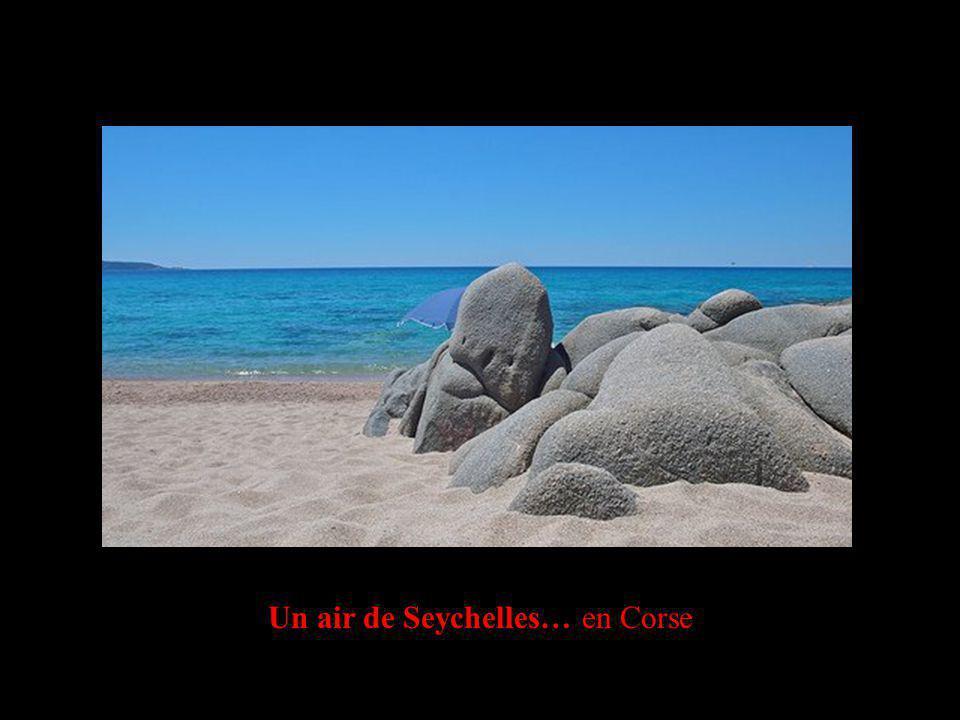 Un air de Seychelles… en Corse