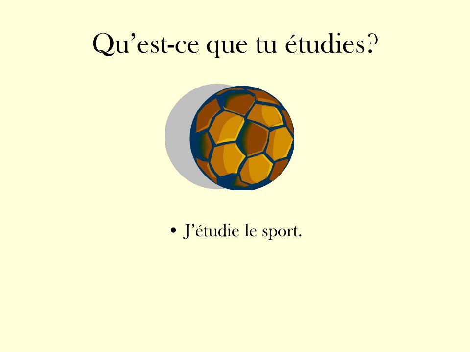 Quest-ce que tu étudies? Jétudie le sport.