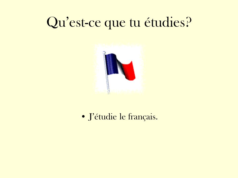 Quest-ce que tu étudies? Jétudie le français.