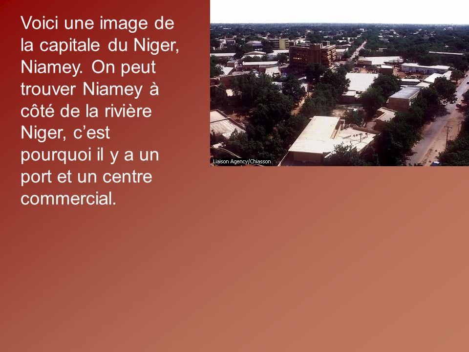 Voici une image de la capitale du Niger, Niamey.
