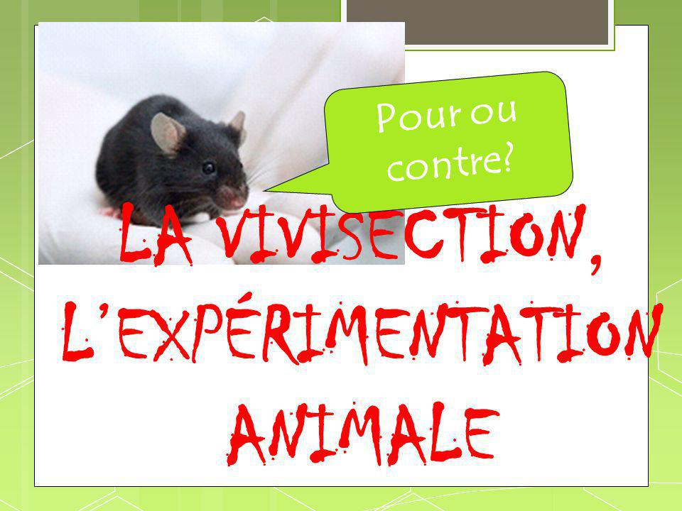 LA VIVISECTION, LEXPÉRIMENTATION ANIMALE Pour ou contre?