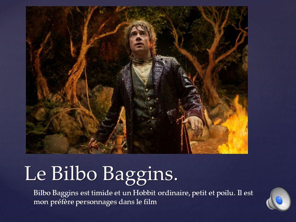 Le Bilbo Baggins.Bilbo Baggins est timide et un Hobbit ordinaire, petit et poilu.