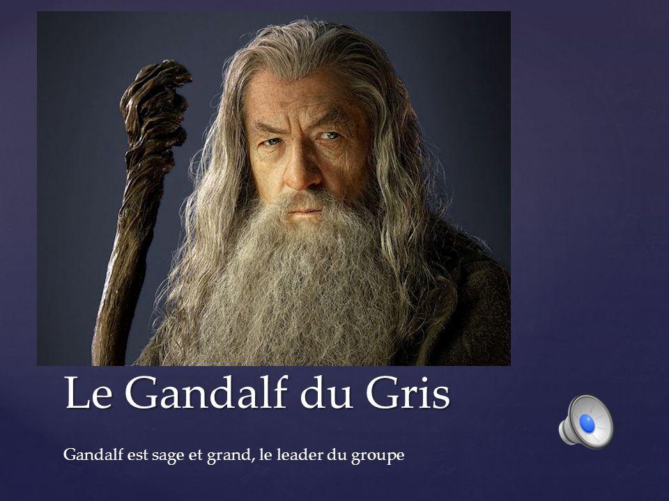 Le Gandalf du Gris Gandalf est sage et grand, le leader du groupe