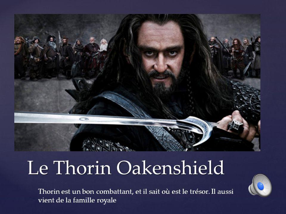 Le Thorin Oakenshield Thorin est un bon combattant, et il sait où est le trésor.