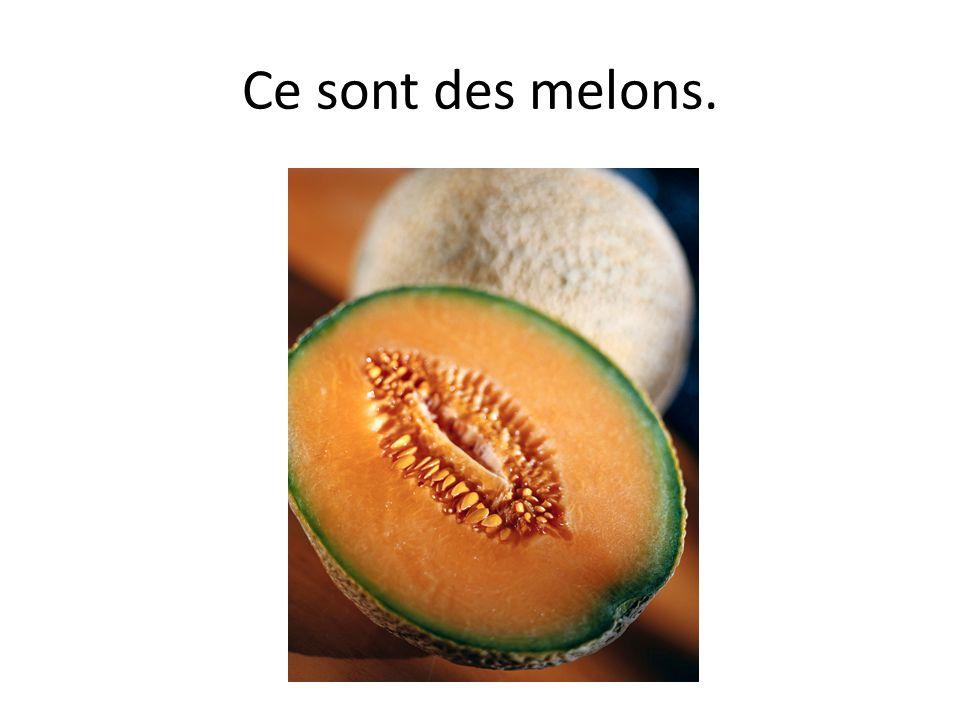 Ce sont des melons.