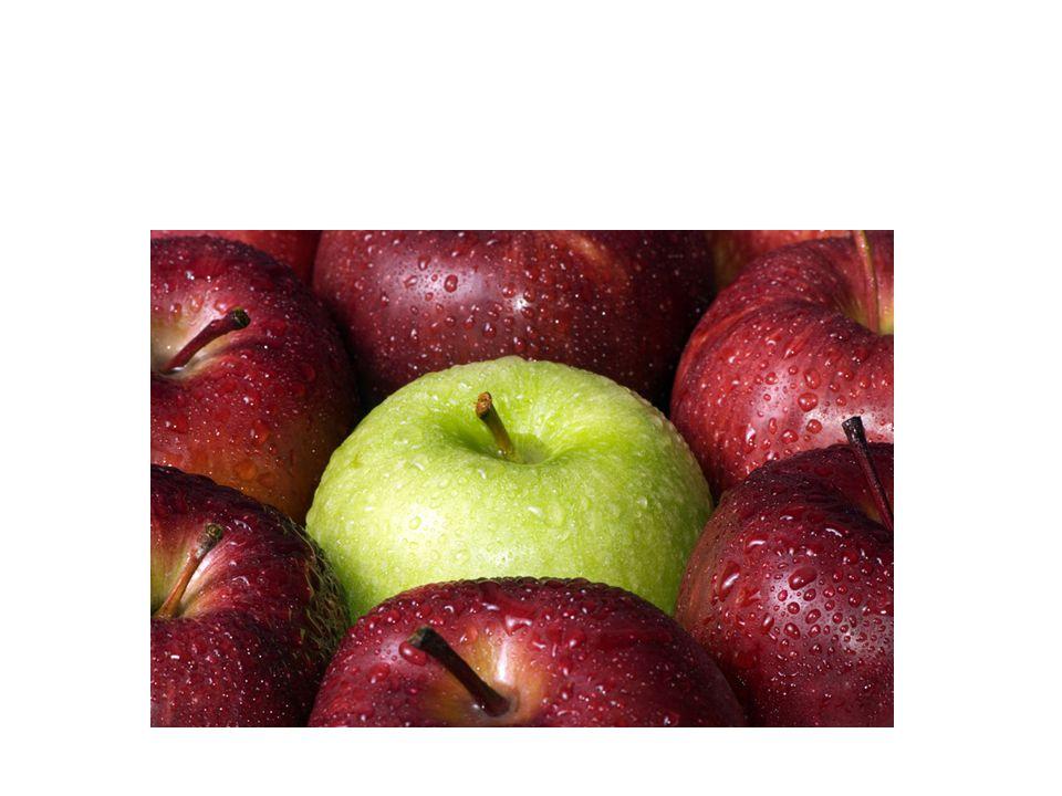 Ce sont des pommes.