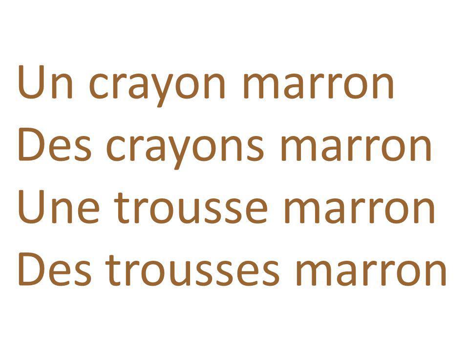 Un crayon marron Des crayons marron Une trousse marron Des trousses marron