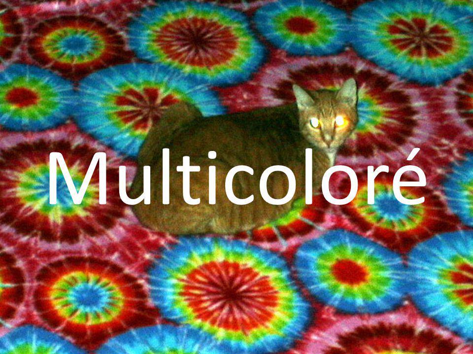 Multicoloré