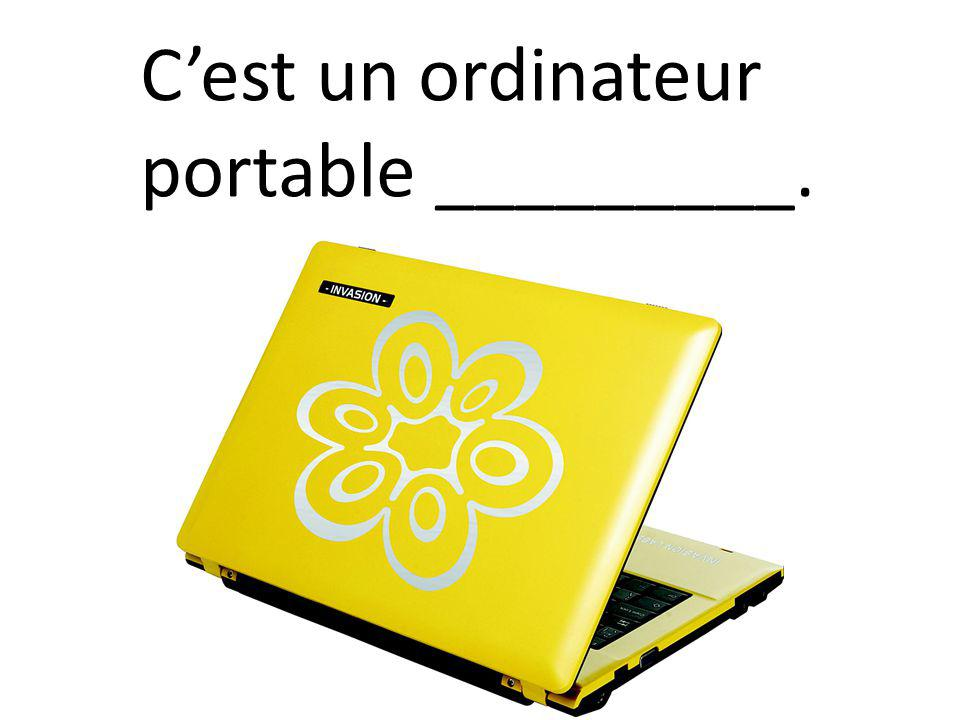 Cest un ordinateur portable _________.