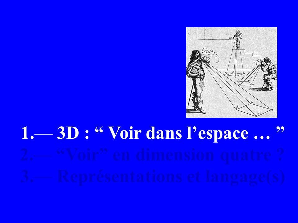 1. 3D : Voir dans lespace … 2. Voir en dimension quatre ? 3. Représentations et langage(s)