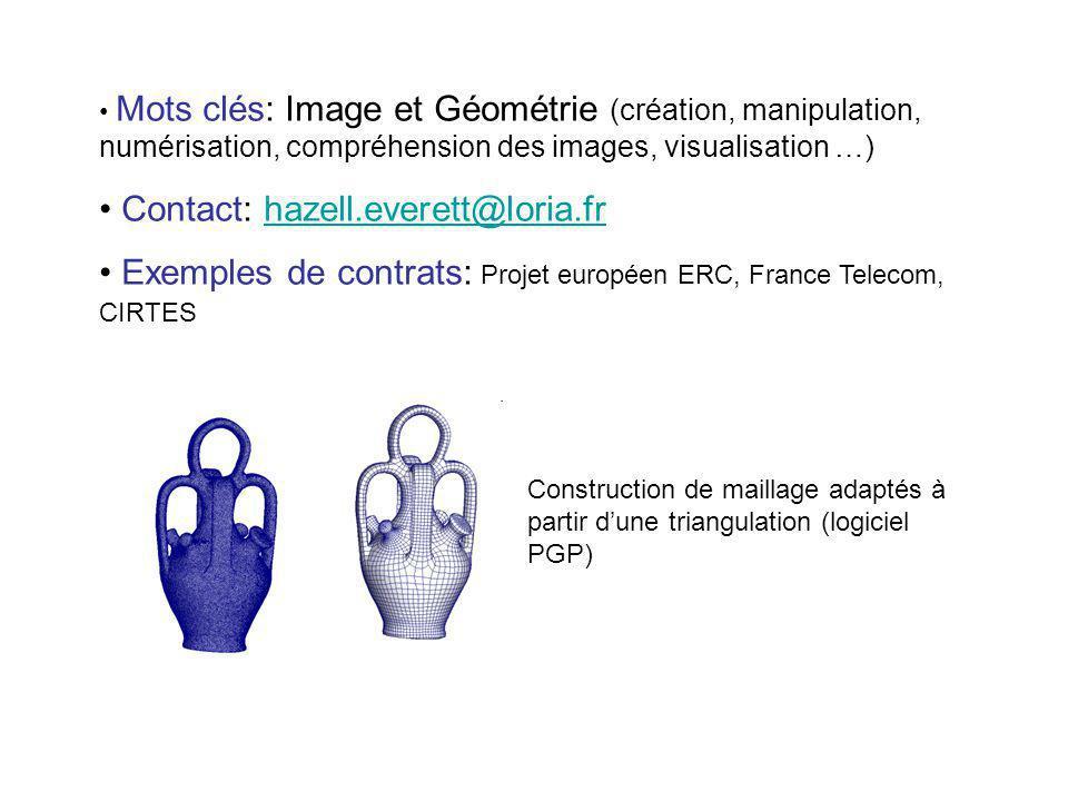Mots clés: Image et Géométrie (création, manipulation, numérisation, compréhension des images, visualisation …) Contact: hazell.everett@loria.frhazell