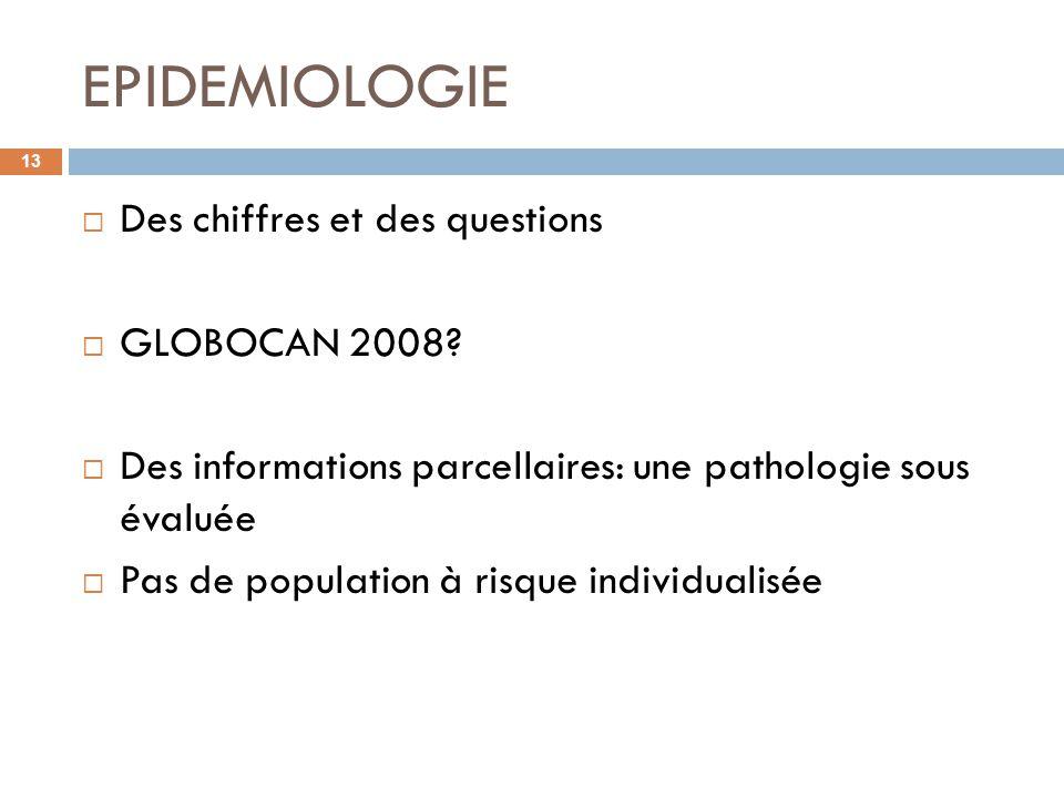 EPIDEMIOLOGIE 13 Des chiffres et des questions GLOBOCAN 2008? Des informations parcellaires: une pathologie sous évaluée Pas de population à risque in