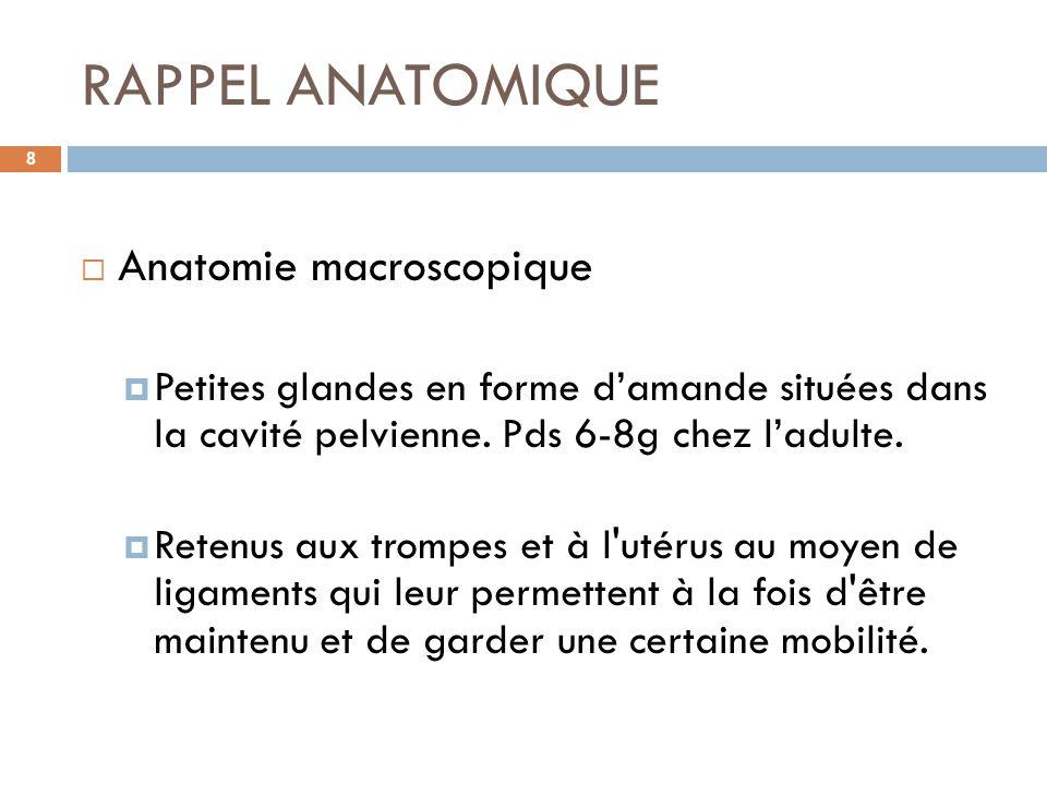 RAPPEL ANATOMIQUE 8 Anatomie macroscopique Petites glandes en forme damande situées dans la cavité pelvienne. Pds 6-8g chez ladulte. Retenus aux tromp