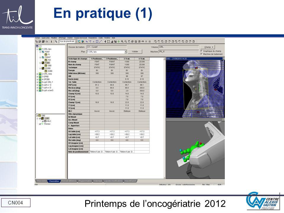CN004 Printemps de loncogériatrie 2012 En pratique (1)