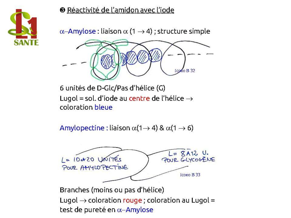 Réactivité de lamidon avec liode