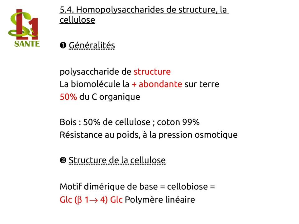 5.4. Homopolysaccharide s de structure, la cellulose