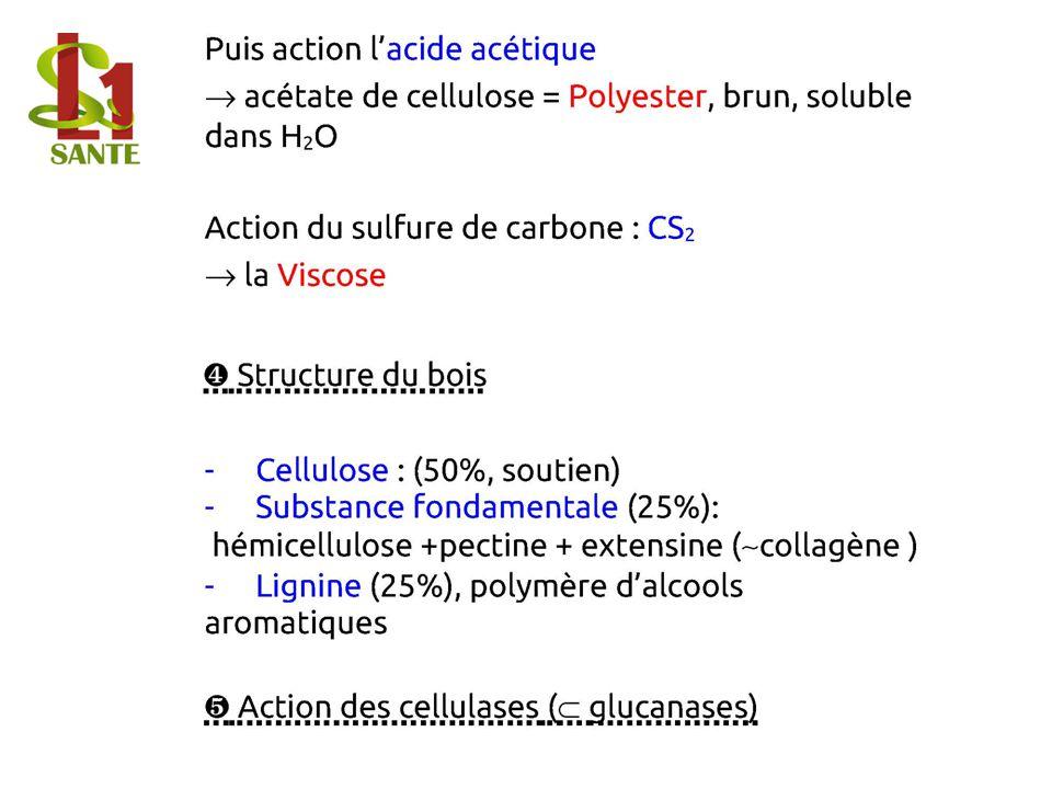 Puis action lacide acétique acétate de cellulose=Polyester, brun, soluble dans H2O Action du sulfure de carbone : CS2 la Viscose