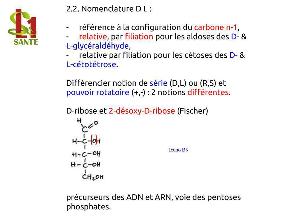 2.2. Nomen clature D L