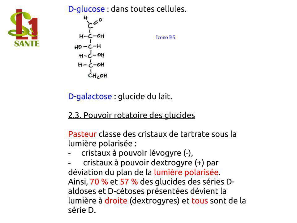 D- glucose : dans toutes cellules. D- galactos e : glucide du lait.