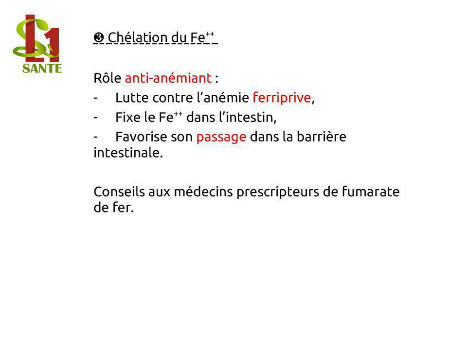 Chélation du Fe ++