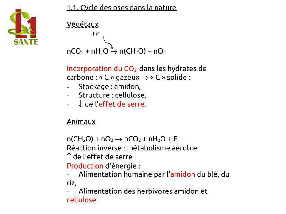 1.1. Cycle des oses dans la nature
