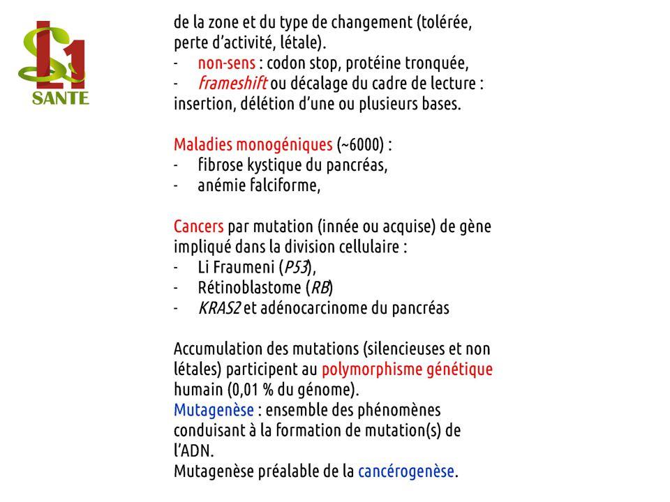 « Tout cancer provient de mutations acquises ou innées ».