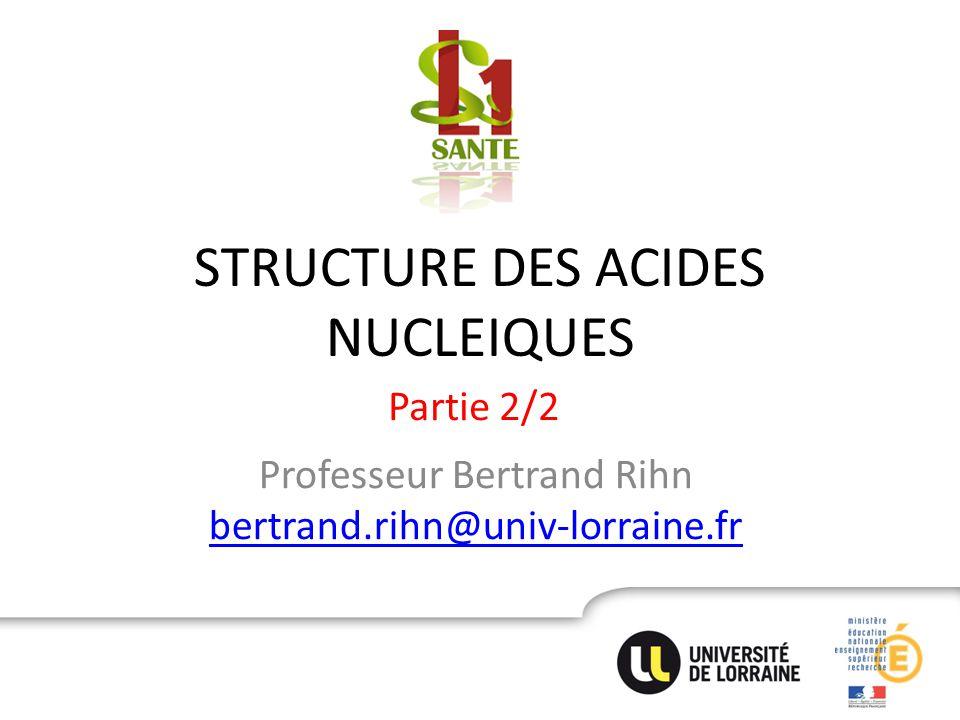STRUCTURE DES ACIDES NUCLEIQUES Professeur Bertrand Rihn bertrand.rihn@univ-lorraine.fr bertrand.rihn@univ-lorraine.fr Partie 2/2