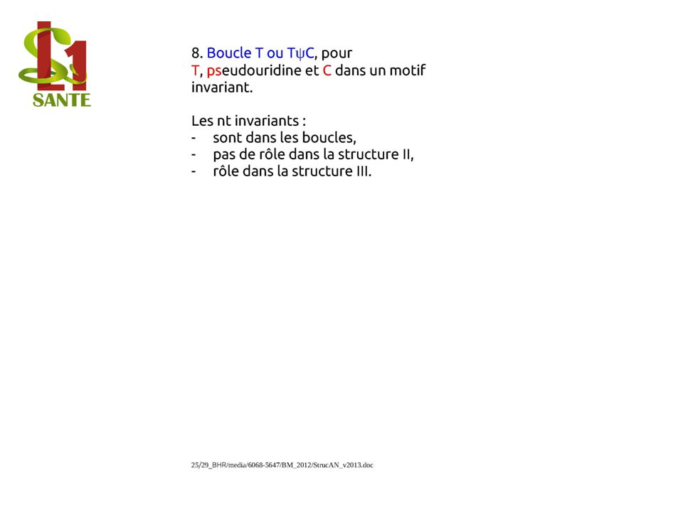 Boucle T ou T ψ C