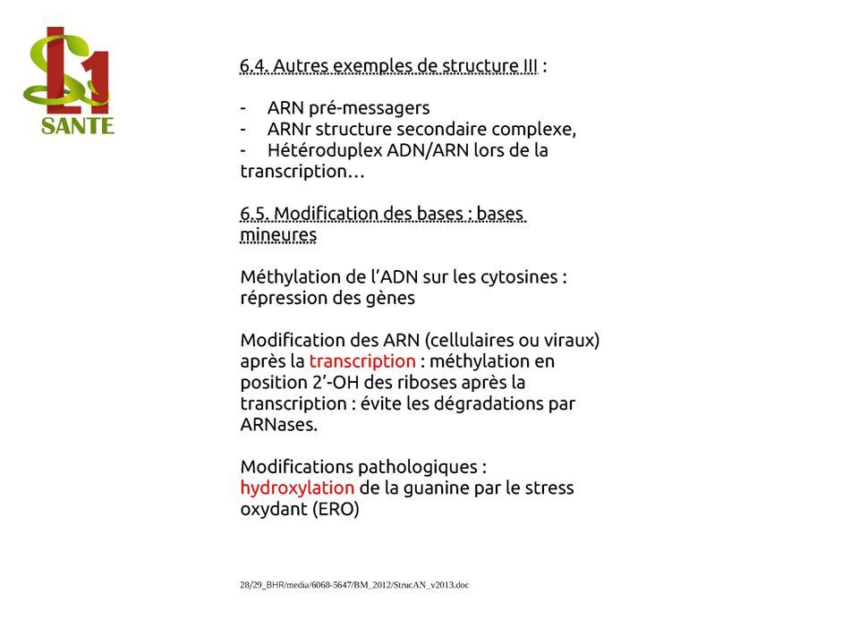 6.4. Autres exemples de structure III