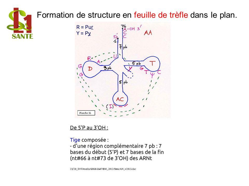Formation de structure en feuille de trèfle dans le plan.