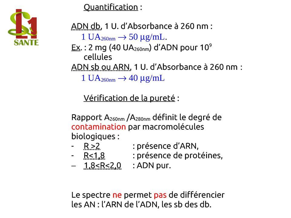 Quantification :