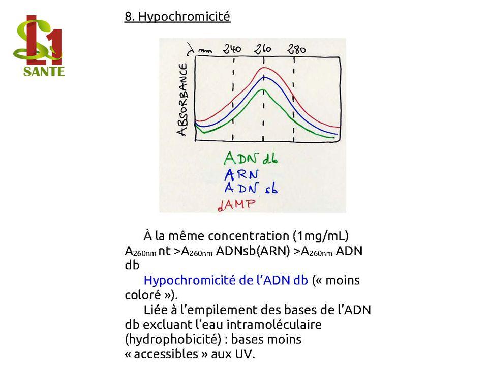 8. Hypochromicité