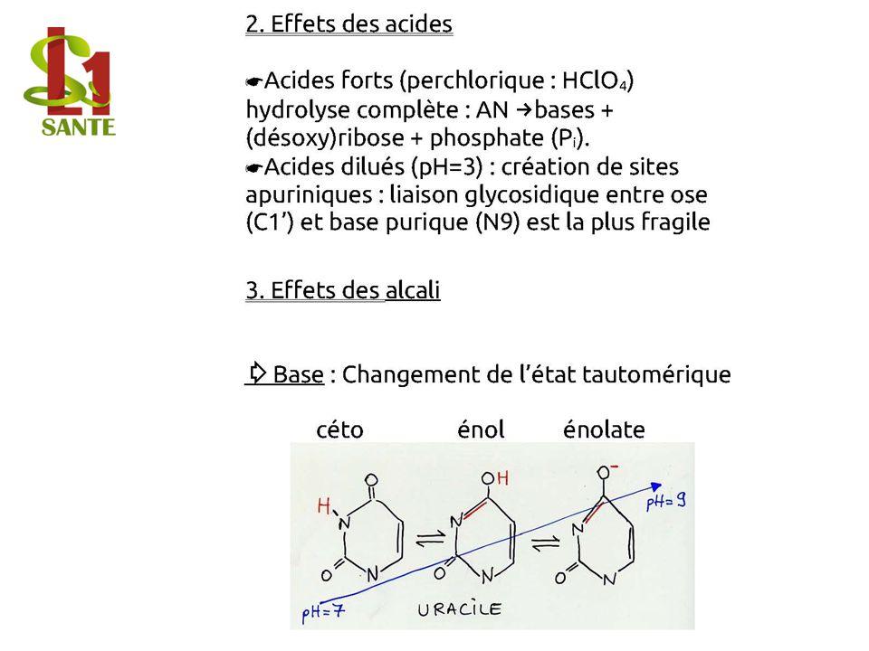 2. Effets des acides