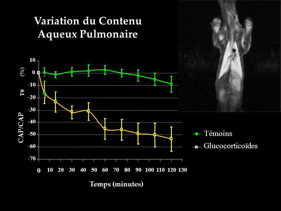 Variation du Contenu Aqueux Pulmonaire -70 -60 -50 -40 -30 -20 -10 0 10 0 2030405060708090100110120130 Temps (minutes) CAP/CAP T0 (%) Témoins Glucocor