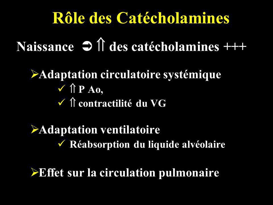 Rôle des Catécholamines Naissance des catécholamines +++ Adaptation circulatoire systémique P Ao, contractilité du VG Adaptation ventilatoire Réabsorp