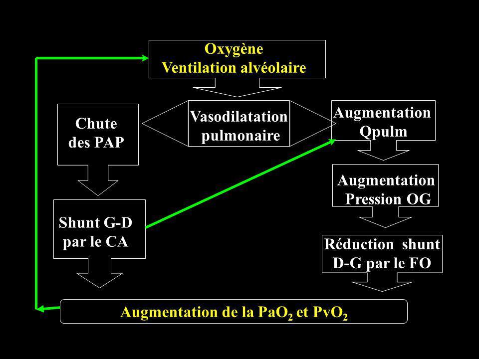 Oxygène Ventilation alvéolaire Vasodilatation pulmonaire Augmentation Qpulm Chute des PAP Augmentation Pression OG Shunt G-D par le CA Réduction shunt