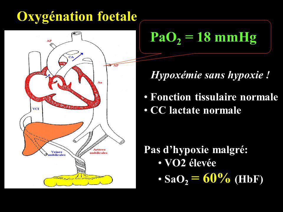 PaO 2 = 18 mmHg Oxygénation foetale Hypoxémie sans hypoxie ! Fonction tissulaire normale CC lactate normale Pas dhypoxie malgré: VO2 élevée SaO 2 = 60