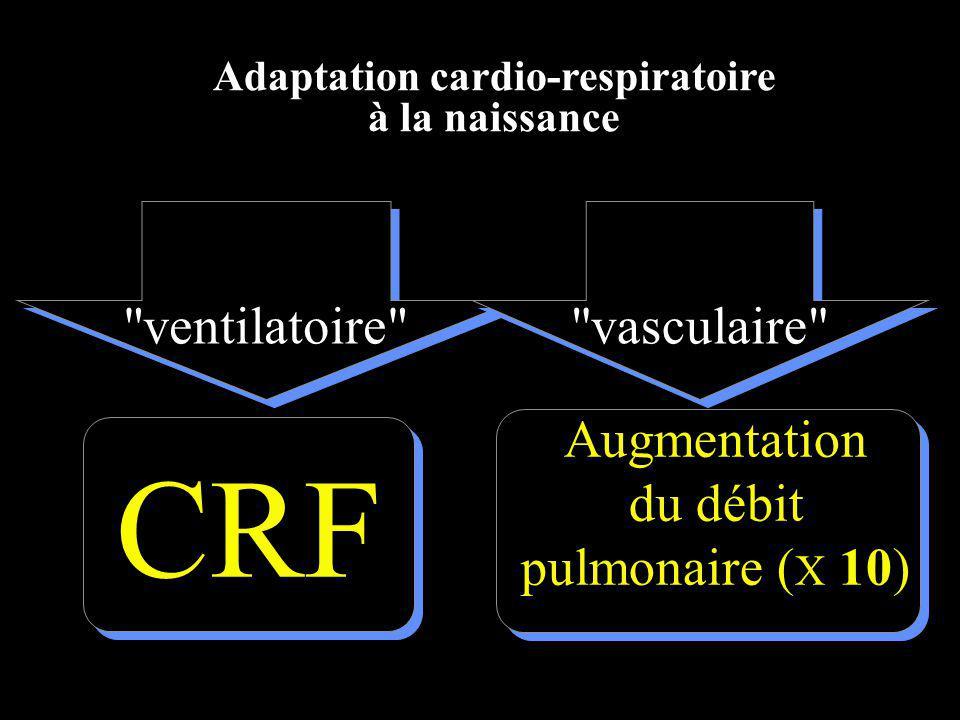 CRF Augmentation du débit pulmonaire ( X 10) Adaptation cardio-respiratoire à la naissance