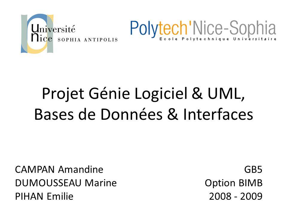 Projet Génie Logiciel & UML, Bases de Données & Interfaces CAMPAN Amandine DUMOUSSEAU Marine PIHAN Emilie GB5 Option BIMB 2008 - 2009