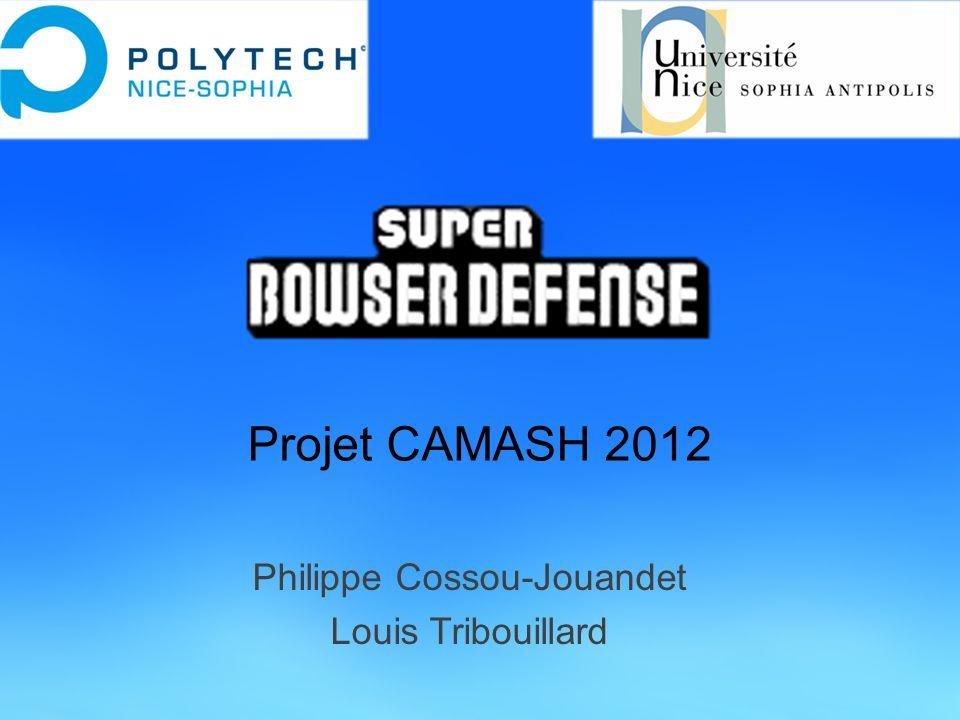 Projet CAMASH 2012 Philippe Cossou-Jouandet Louis Tribouillard