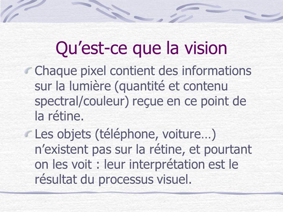 Quest-ce que la vision Chaque pixel contient des informations sur la lumière (quantité et contenu spectral/couleur) reçue en ce point de la rétine. Le