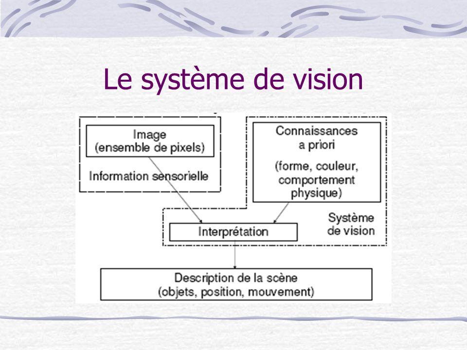 Le problème de la vision La vision humaine est extrêmement complexe.