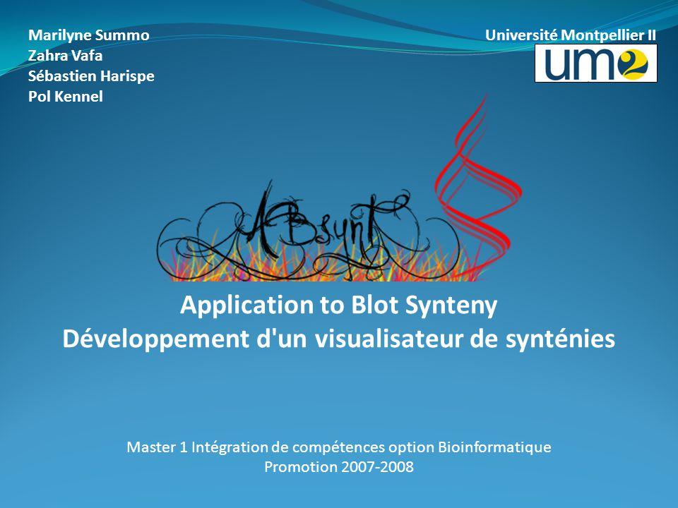 Marilyne Summo Université Montpellier II Zahra Vafa Sébastien Harispe Pol Kennel Application to Blot Synteny Développement d'un visualisateur de synté