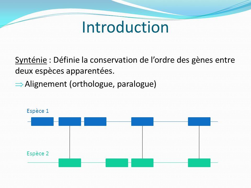 Introduction Synténie : Définie la conservation de lordre des gènes entre deux espèces apparentées. Alignement (orthologue, paralogue) Espèce 1 Espèce